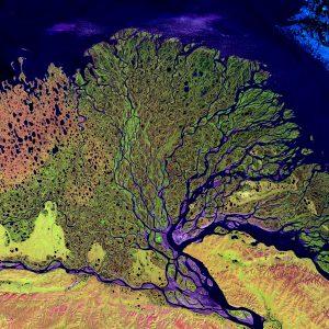 Lena_River_Delta_-_Landsat_2000